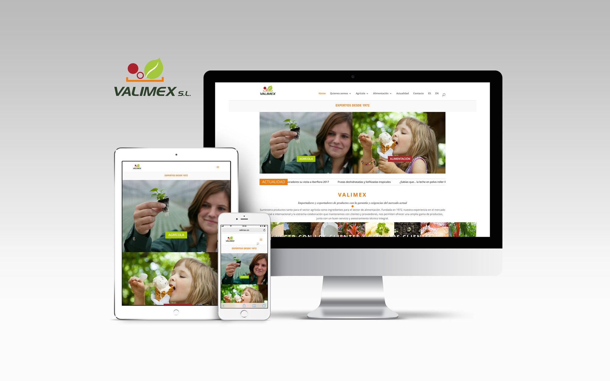 Rediseño web, Valimex, wordpress, diseño response