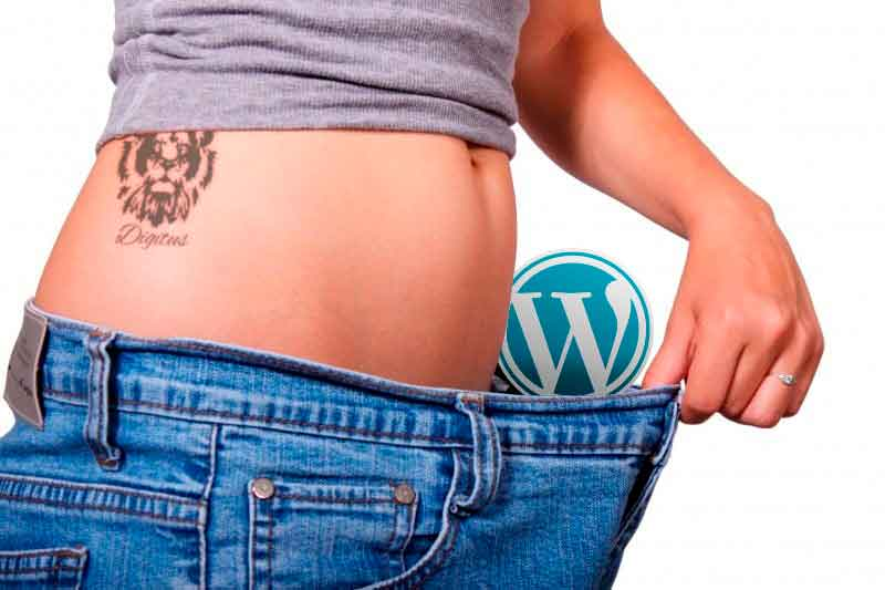 Operación bikini para tu wordpress, 5 ejercicios tonificantes!
